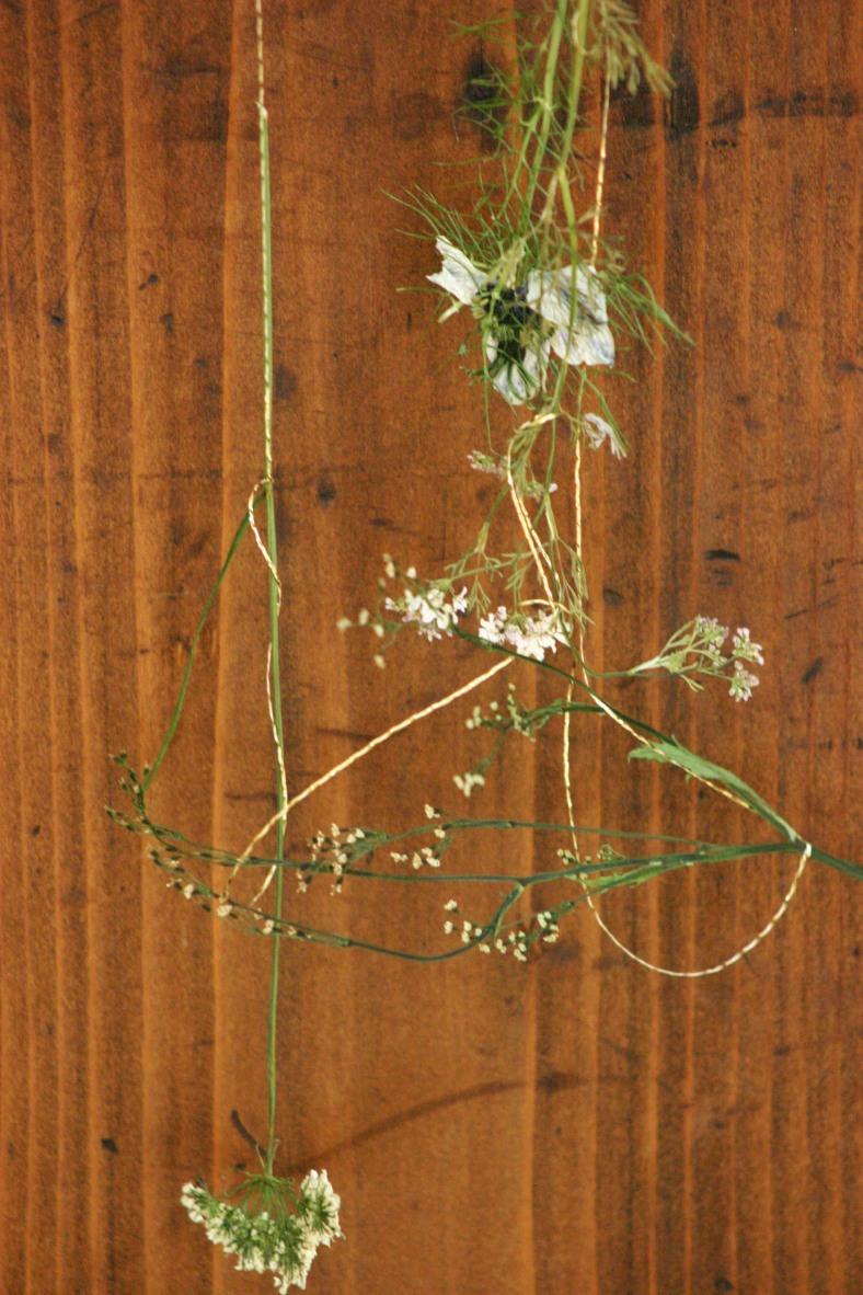 Tangled Pressed Flower Hanging